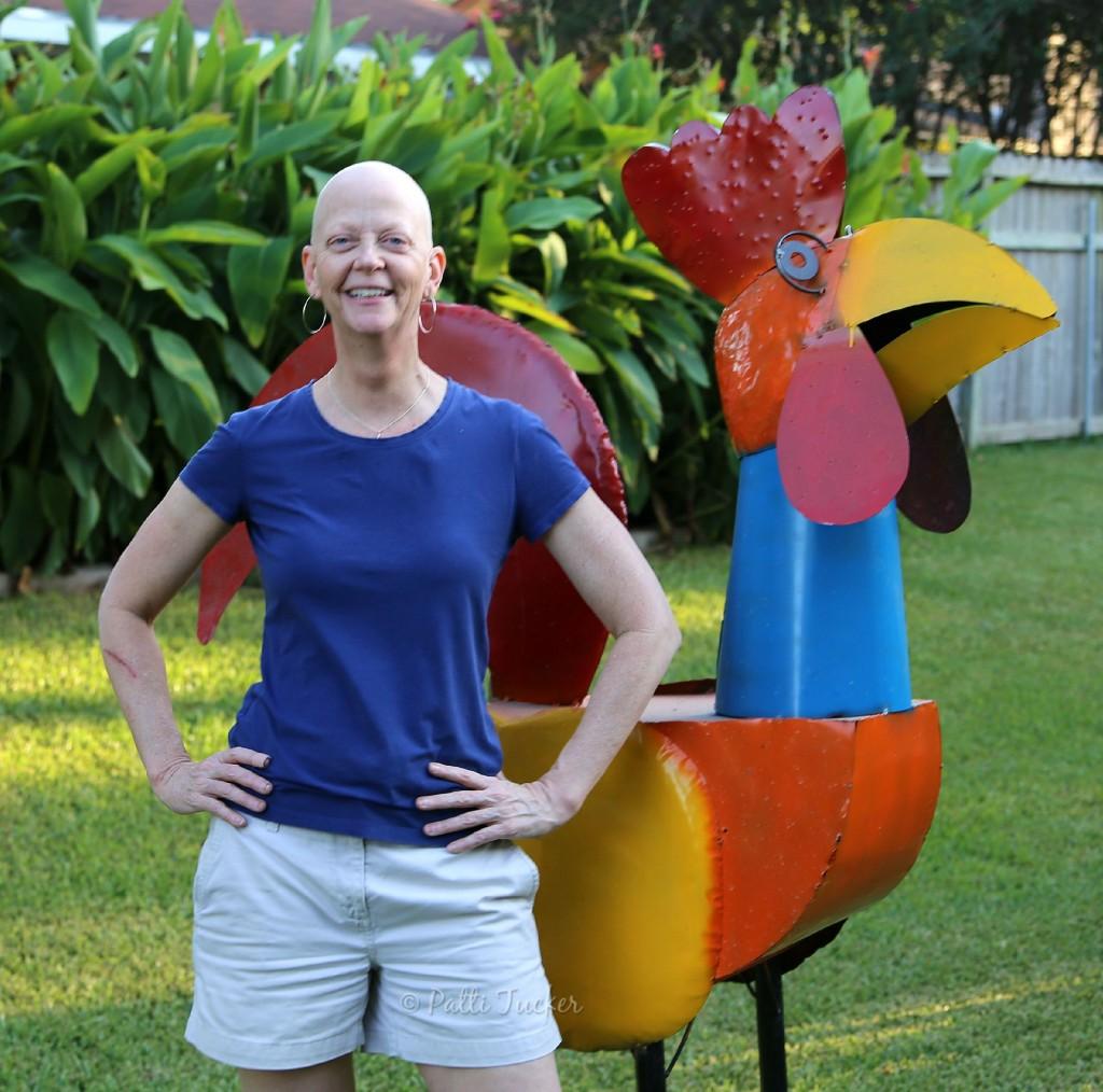 Giant Chicken!